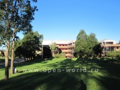 University of Wollongong (19)
