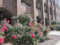 Benedictine College, Kansas (3)