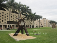 Florida International University, Miami (30)