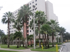 Florida International University, Miami (39)